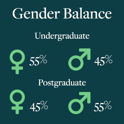 Gender balance statistics by undergraduate/postgraduate