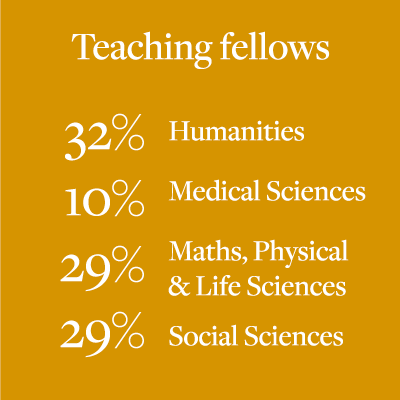 Proportion of teaching fellows by subject area